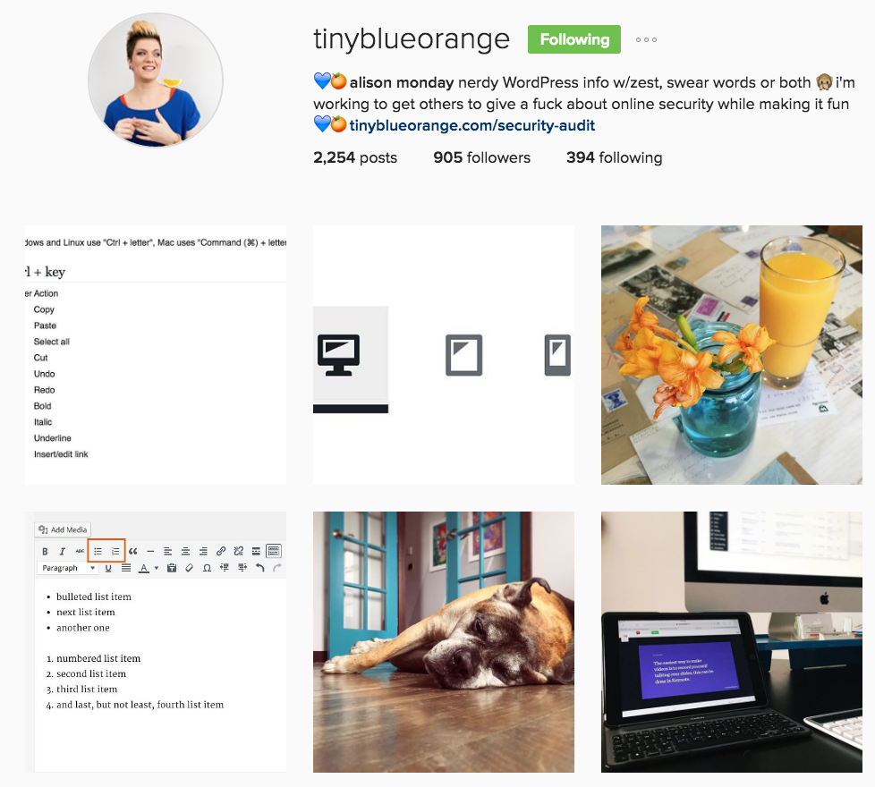 Alison Monday WordPress Wizard Instagram Profile