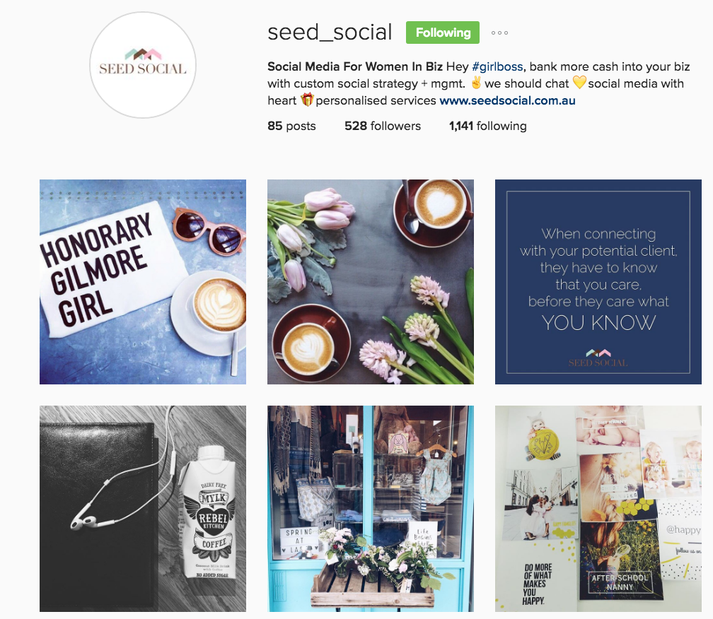 Social Seed Social Media Instagram Profile