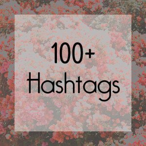 100 Hashtags for Instagram