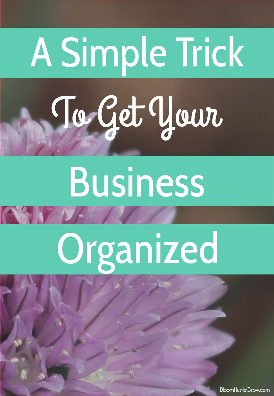 Get Your Business Organized: A Simple Trick To Get You Organized