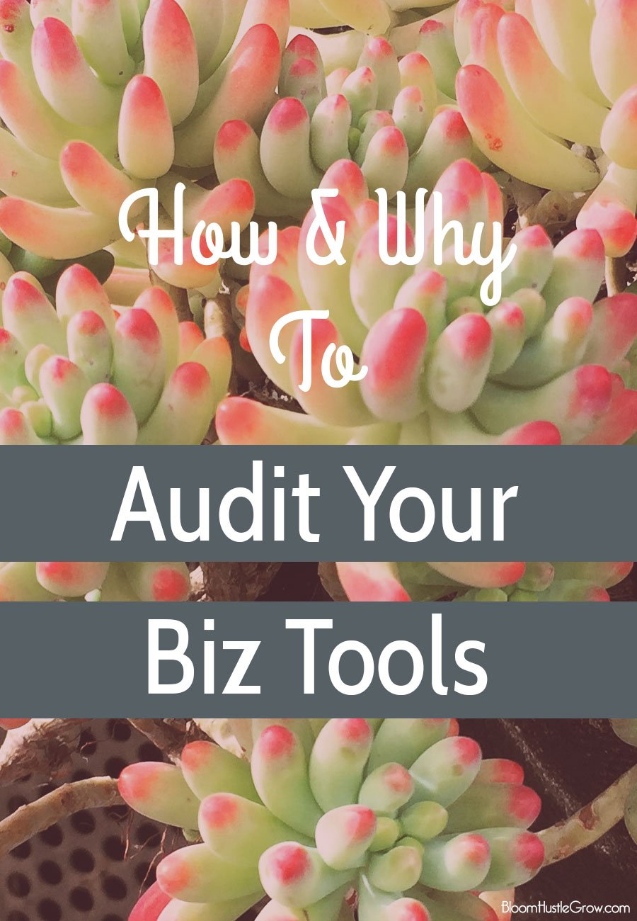 Save money and time by auditing your business tools. I have just the guide to get you started.