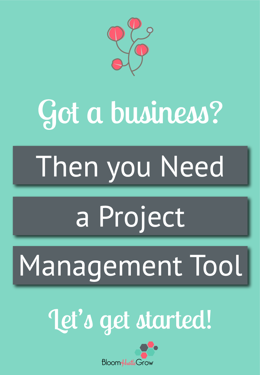 Why a project management tool is a can't live without item for successful business owners