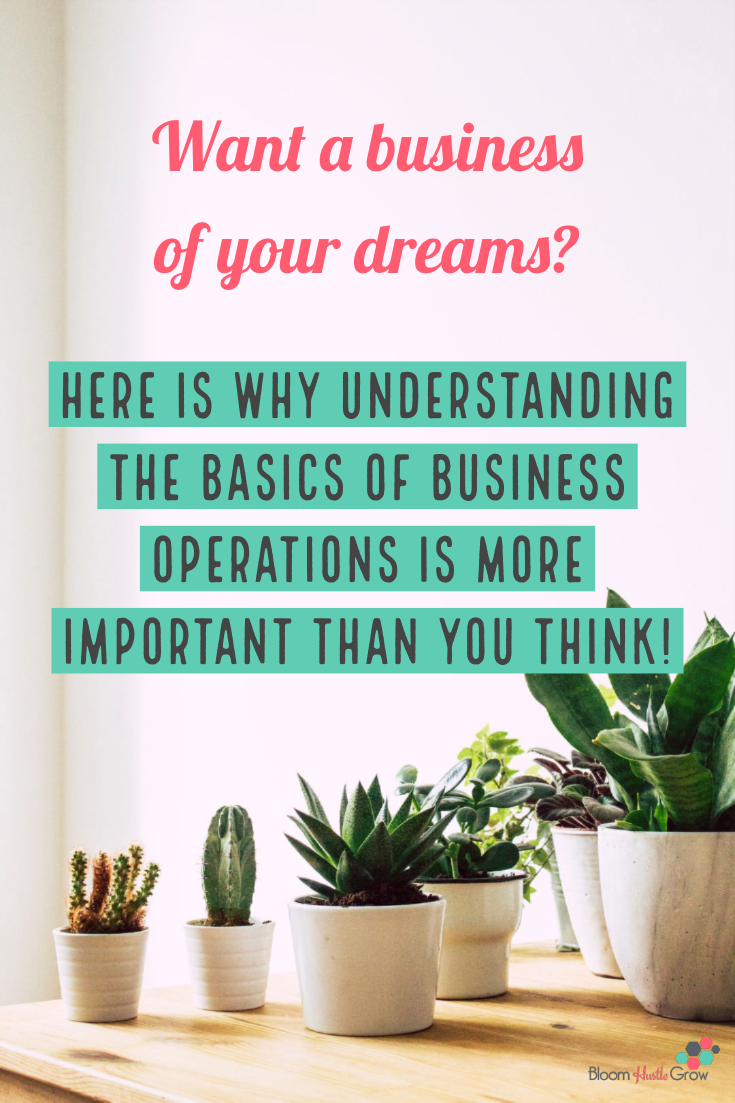 Want a dream business and not a hot mess express? What you need to know about business operations! #business101 #bizoperations #entrepreneur