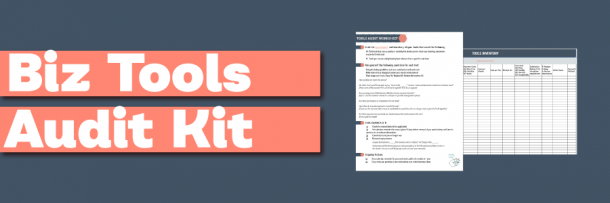 Biz Tool Audit Kit